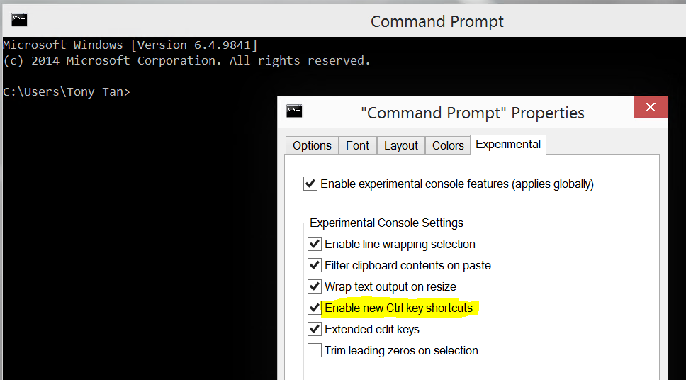 Screenshot of New Command Prompt