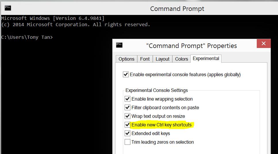 Screenshot of New Command Prompt